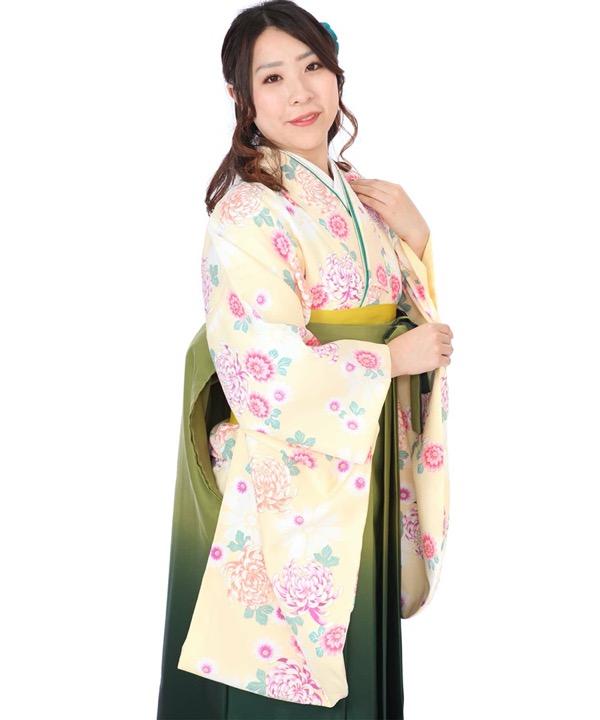 卒業式袴レンタル|クリームに菊着物×緑グラデ刺繍袴