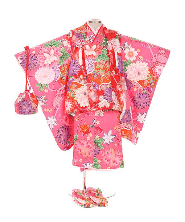 七五三(三歳女の子)着物レンタル|菊柄ピンク着物×赤被布